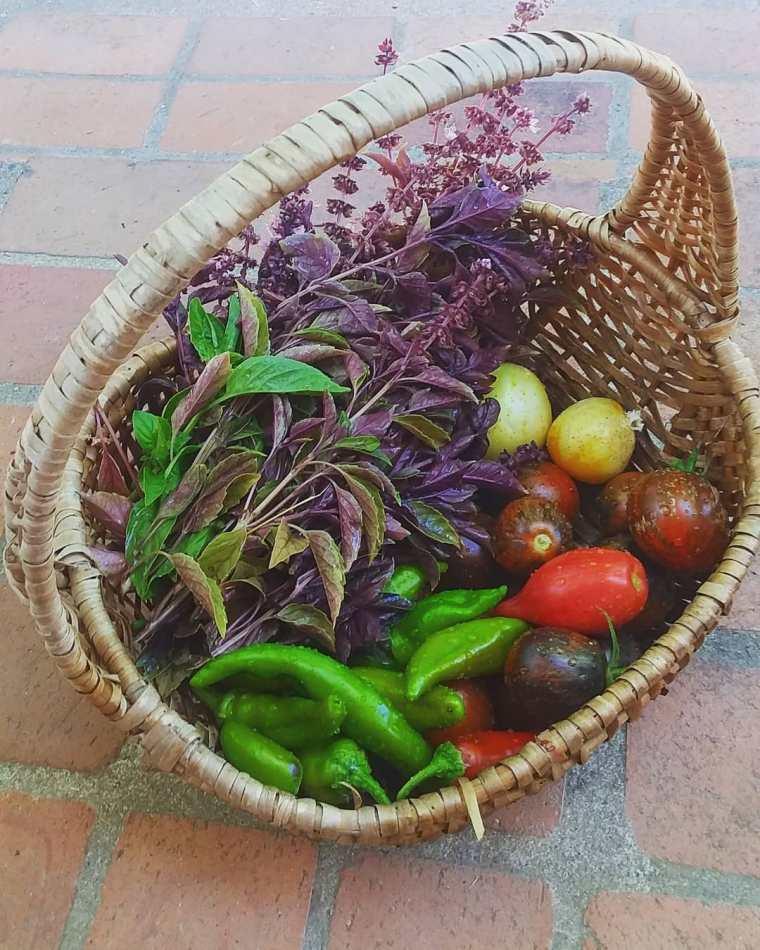 mediterranean veggies 2020